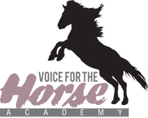 Voice For The Horse