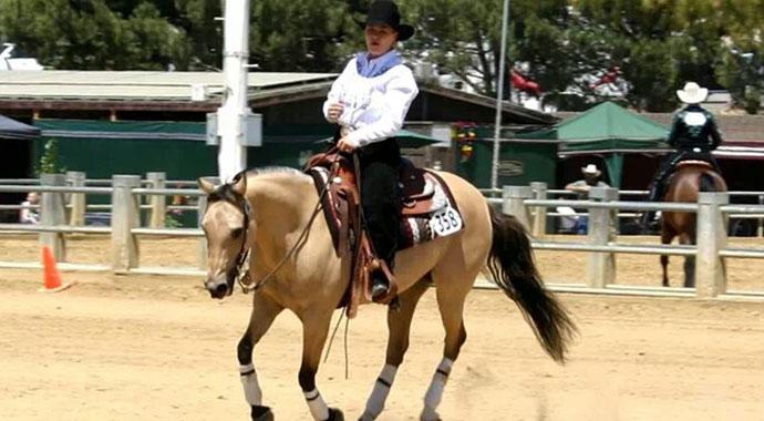 sarah-williams-arabian-horse