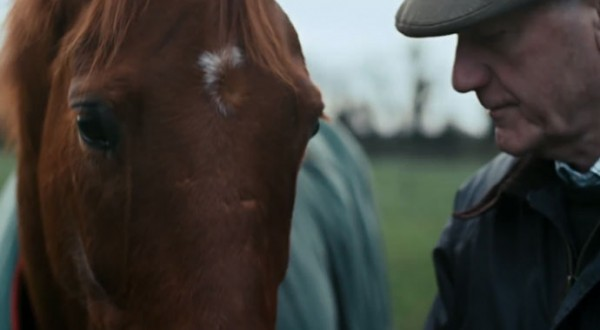 Horseware Ireland Rugs for Life - Horse:Digital
