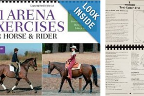 101 Arena Exercises by Cherry Hill: A Book Review