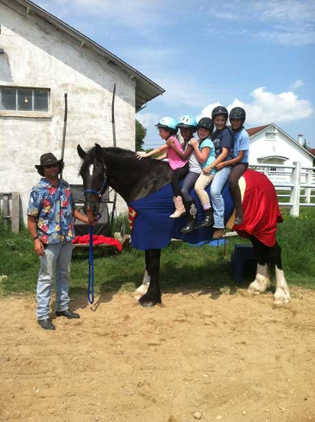 Bravo - The Super Horse of Kid's Camps