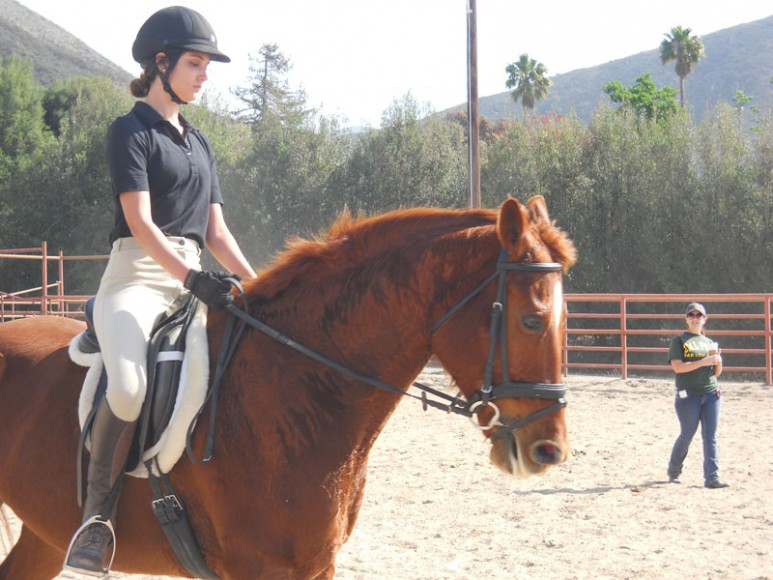 cal-poly-equestrian-team-3