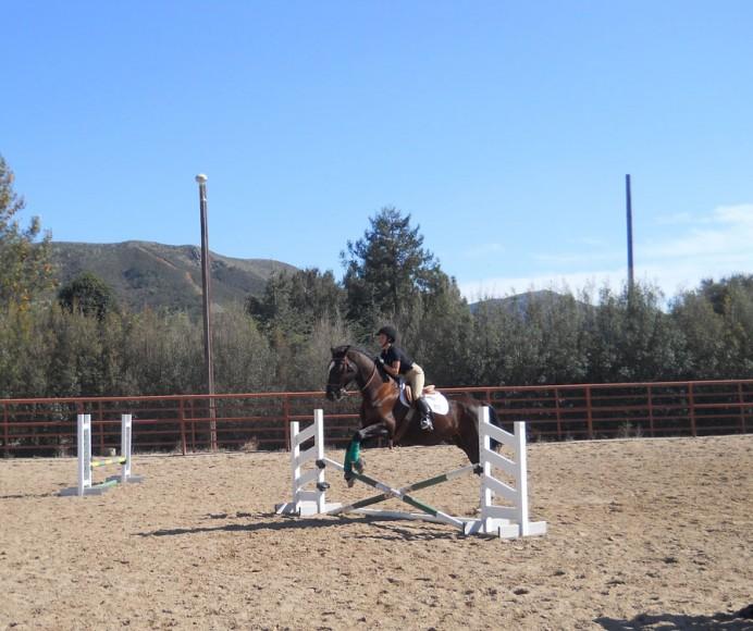 cal-poly-equestrian-team-5