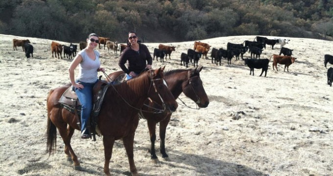 work-ranch-riders-1-sized