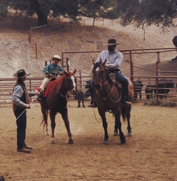 Aaron Lazanoff cattle work 1