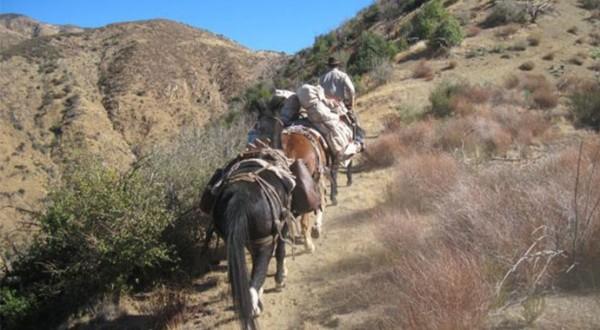 Richard-Waller-Trail-Riding_Sized