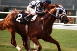 6 Things You Didn't Know About Secretariat