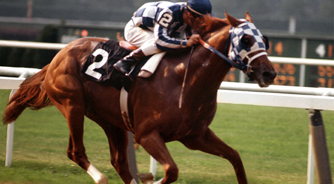 6 Things You Didn't Know About Secretariat | SLO Horse News