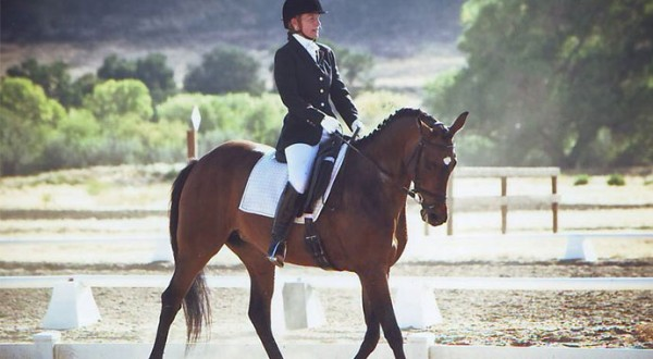 Riding Again: Back Home in the Dressage Saddle
