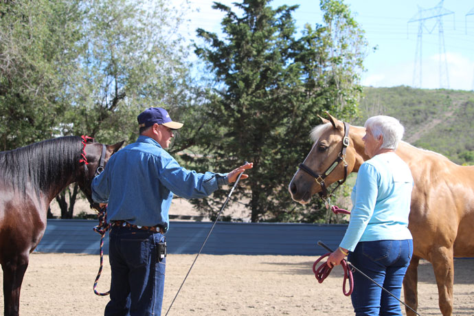 Varian Arabians Hands On Clinic - Mike Perez Coaching a Participant