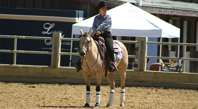 The Reining Files Leg Protection 101 Slo Horse News
