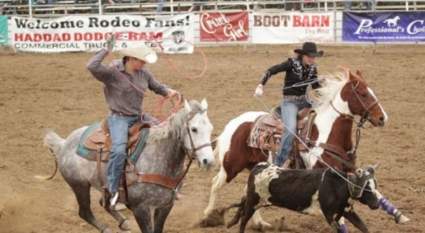 Shaley Stickler Roping