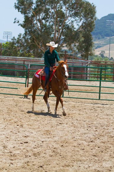 Cal Poly Performance Horse Sale - Student Riding
