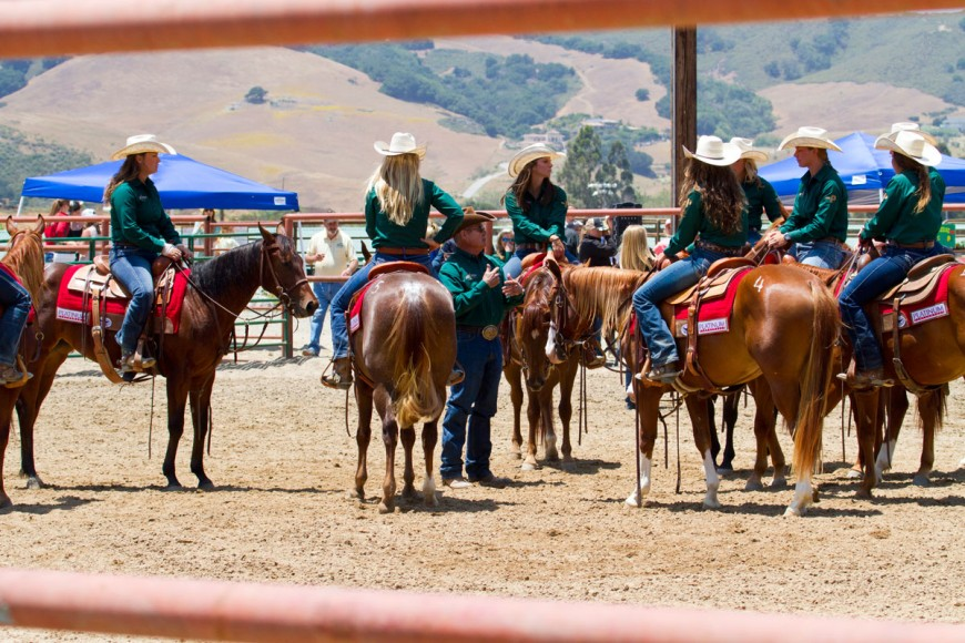 Cal Poly Performance Horse Sale - Girls Chatting
