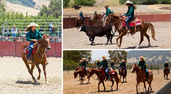 Cal Poly Performance Horse Sale