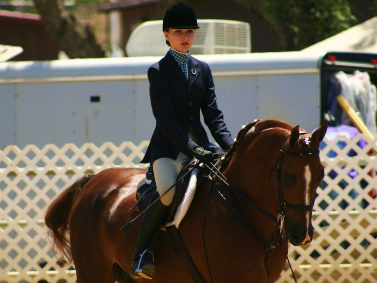 Region 2 Championship Arabian Horse Show