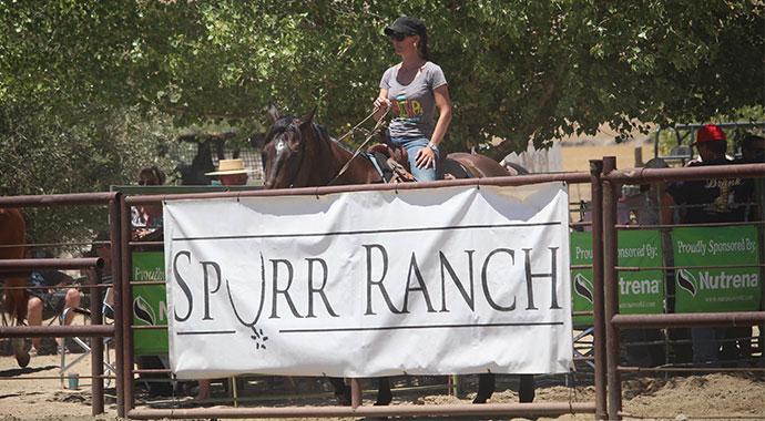 Spurr Ranch Gate