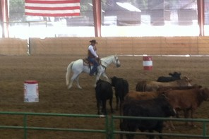 A Cattleman's Best Friends: Cow Dogs and Ranch Horses