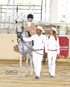 little girl who was recovering from cancer treatments riding Mosquito. She always dreamed of showing in a horse show and here she won the lead-line class at a Peruvian Paso Horse Show. Mosquito is being led by Juan and Lori Harmon is present as support.