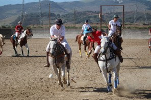 The Central Coast Polo Club – Home of Champions!
