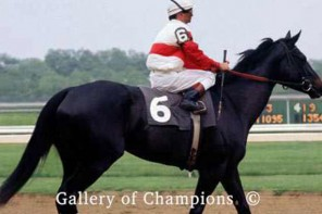 Remembering Ruffian – Queen Of The Fillies