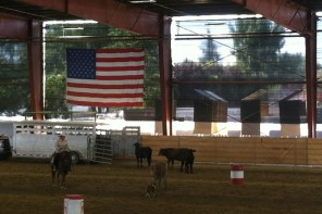 The Coalinga Cow Dog Classic