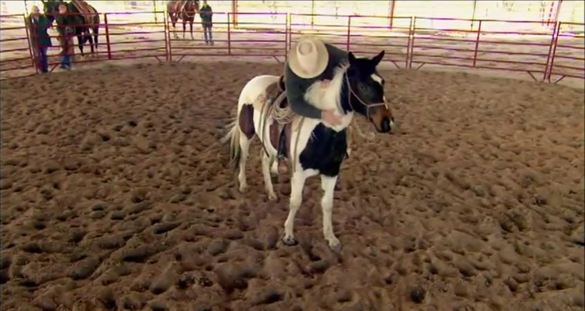 Buck Brannaman and Horse