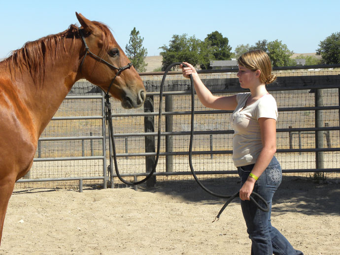 Cheyenne doing a horse demonstration with Jazz.
