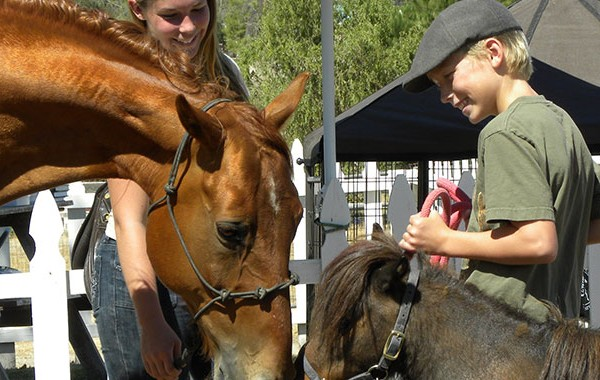 Five Tips to Becoming a Better Barn Mate | SLO Horse News
