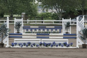 Upcoming Hunter/Jumper Show At Shadow Hill Riding School