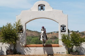 Jump Judging Adventures at Twin Rivers Horse Park