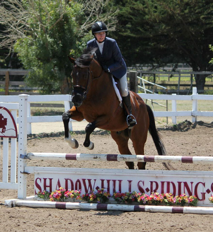 Shadow Hill Riding School