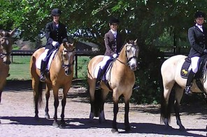SLO CDS Hosts the Regional Adult Amateur Competition