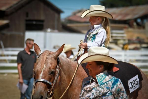 Quarter Horse Leadline