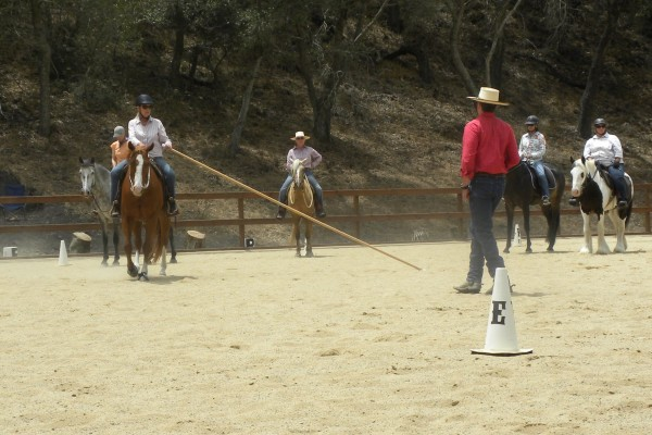 Pole helps make a perfect circle with a properly bent horse.