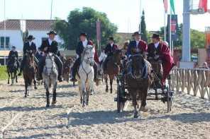 The Feira de Golegã – Portugal : The Showcase of the Lusitano Horse