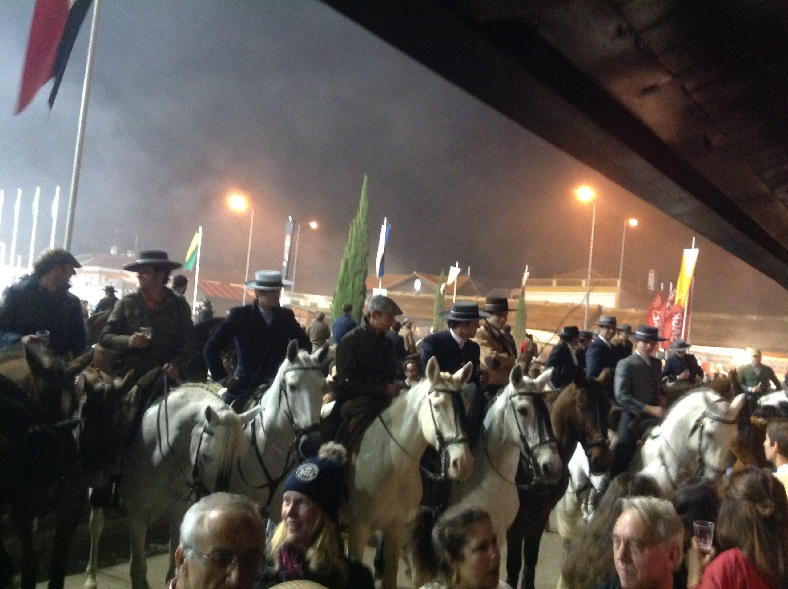 Horses, Friends, Fun : Golegã Fair at Night | SLO Horse News