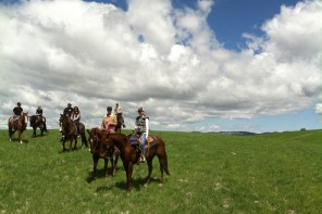 Explore, Enjoy and Energize for a Cause: Work Ranch Benefit Trail Ride