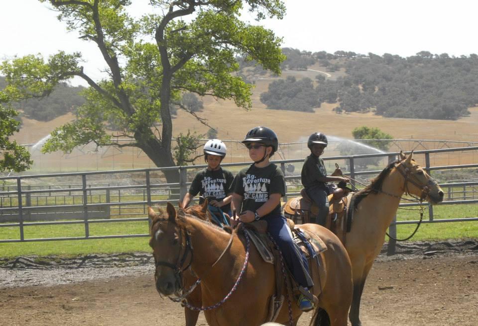 Boys riding horses (960x656)