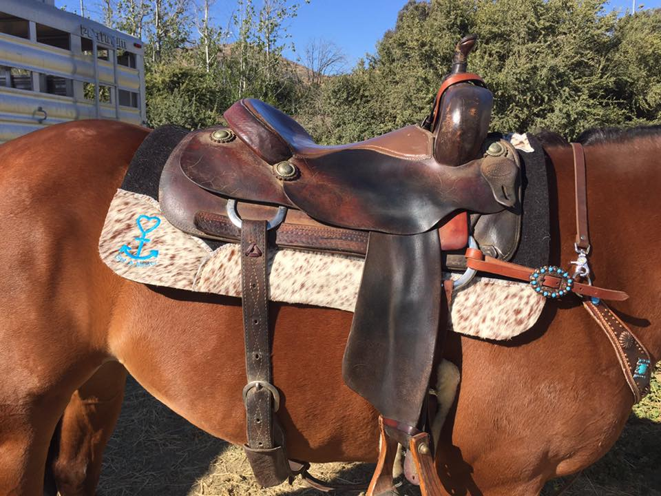 Just the saddle and the pad