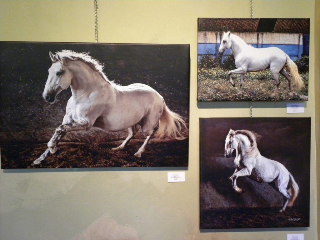 Michael Johnston Equine Photography Art