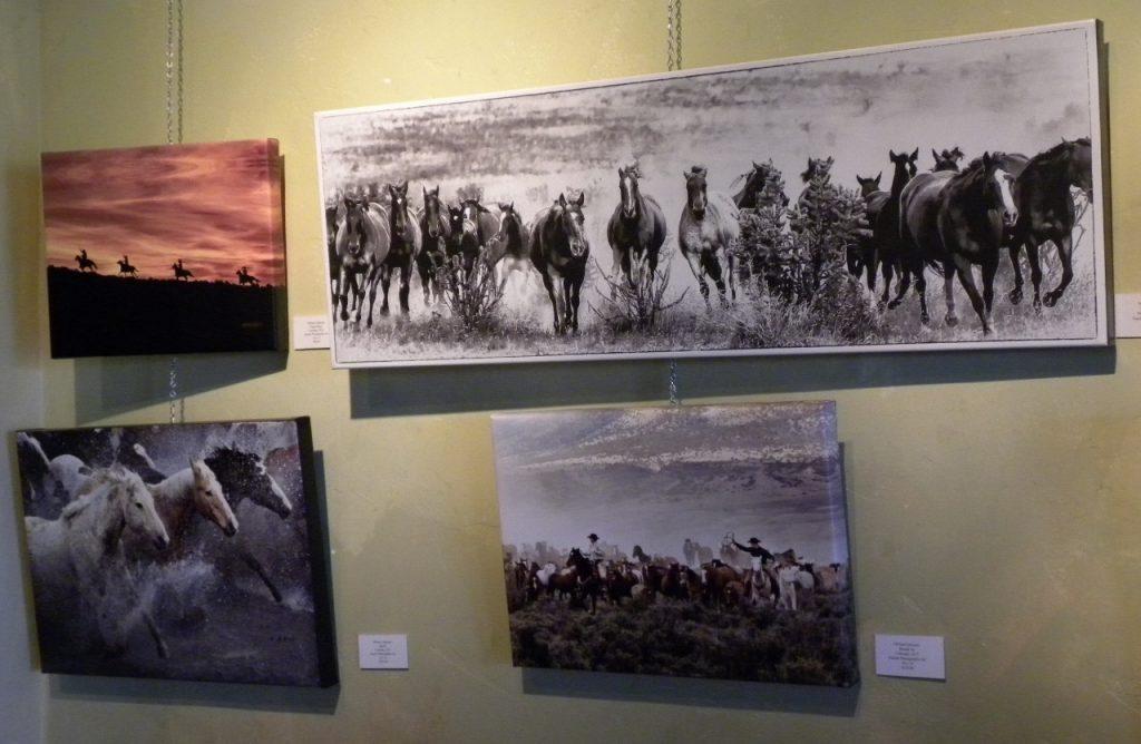 Michael herd gallery (1280x835)