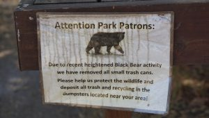 BB Camp - Bear warning (1280x725)