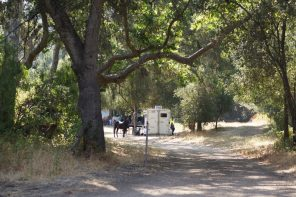 Horse Camping at Black Bear Equestrian Camp
