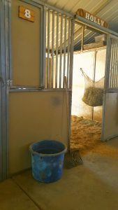 Stall cleaning (576x1024)