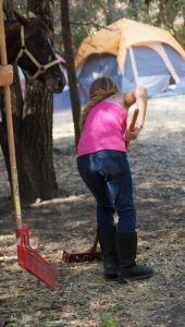 Youth Camp - cleaning manure (725x1280)