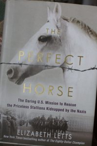the-perfect-horse-whole-book-678x1024