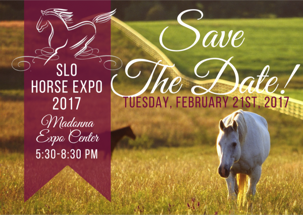 Face-to-Face Time with Vets and Friends: SLO Horse Expo | SLO Horse News