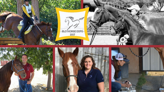 Free Horse Health Education by Local Equine Veterinarians | SLO Horse News