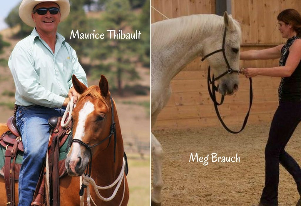 """Improve Your Horsemanship with Two """"Can't Miss"""" Clinics 